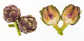 Purple artichokes and half artichoke, on white Stock Photography