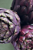 Purple artichokes Royalty Free Stock Photography