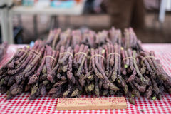 Purple Asparagus. At a farmers market stock photos