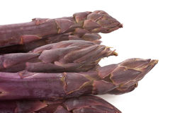 Purple Asparagus Tips. The tips of a bunch of fresh purple asparagus spears Stock Photography