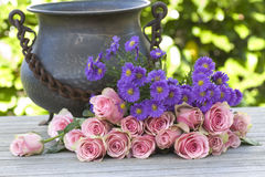 Purple aster and pink roses with a antique vase Stock Images