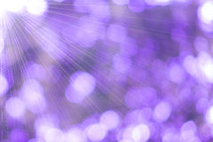 Purple background Abstract nature Stock Photo