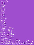 Purple background with purple and white flowers Stock Images