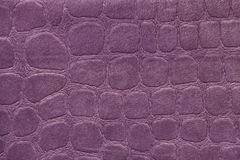 Purple background from a soft upholstery textile material, closeup. Royalty Free Stock Photo