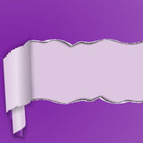 Purple background with a torn strip of paper, curled into a roll. Royalty Free Stock Photo
