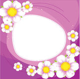 Purple background with a white flowers Royalty Free Stock Image