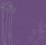 Purple background with white flowers Royalty Free Stock Image