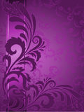 Purple Background With Ornament Royalty Free Stock Photo