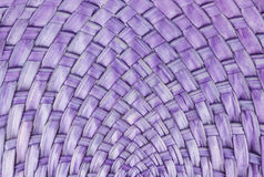 Purple bamboo textured Stock Photography
