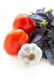 Purple basil, tomatoes and garlic closeup. Stock Images