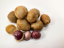 Purple beans Royalty Free Stock Photography