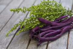 Purple beans lying on a wooden table Royalty Free Stock Photos