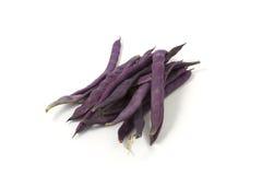 Purple beans stock photo