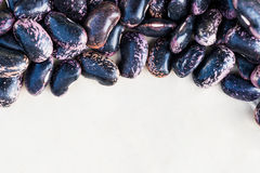 Purple beans on white background Stock Images