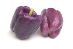 Purple Beauty Pepper. The colour of bell pepper can be green, yellow, orange, red and more rarely - as seen here - purple stock image