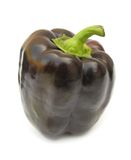 Purple bell pepper Stock Photos