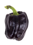 Purple bell pepper Royalty Free Stock Photo