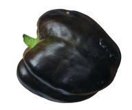 Purple bell pepper Stock Photo