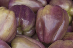 Purple Bell Peppers Royalty Free Stock Photography