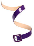 Purple belt Stock Photography