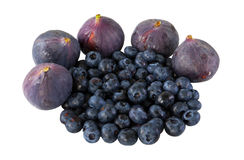 Purple berry Stock Images