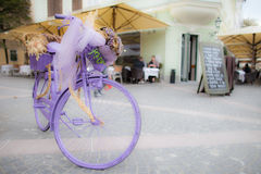 Bicycle. Purple decoration basket frame Stock Photos
