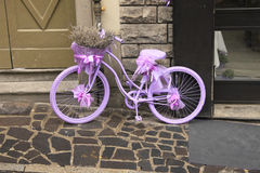 Purple bicycle with lavender. Royalty Free Stock Photos