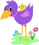 Purple Bird with Baby Birds Stock Photos