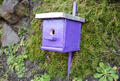 Purple birdhouse, nesting box for birds friendly garden. Stock Photo