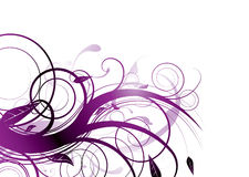 Purple bloom Stock Images