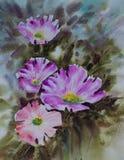 Purple bloom flowers painting Stock Images