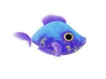 Purple blue fish Royalty Free Stock Photo