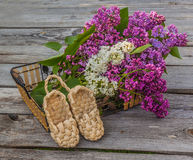 Purple-blue lilac and bast shoes on a wooden  table Royalty Free Stock Images