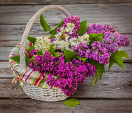 Purple-blue lilac in a white basket  on a wooden  table Royalty Free Stock Photo
