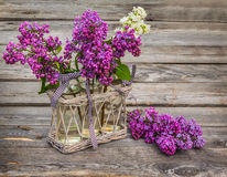 Purple-blue lilac  on a wooden  table Stock Images
