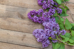 Purple-blue lilac on a wooden  table Royalty Free Stock Images