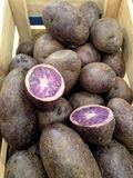 Purple & blue potatoes Stock Photo