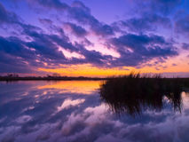 Purple and blue reflection