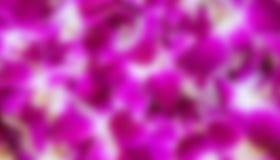 Purple   blur backgound Royalty Free Stock Image