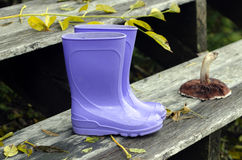Purple boots and forest mushroom Stock Image