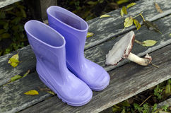 Purple boots and forest mushroom Stock Photography