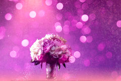 Purple bouquet Stock Photos