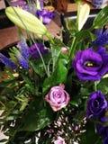 Purple bouquet stock images