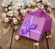 Purple box and branches Royalty Free Stock Photography