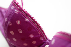Purple bra Stock Photos