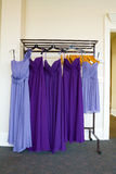 Purple Bridesmaid Dresses Stock Photos