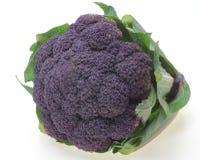 Purple broccoli with leaf Stock Photo