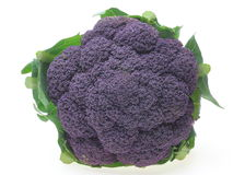 Purple broccoli with leaf Stock Photography