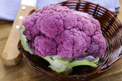 Purple broccoli on a wooden table Stock Image