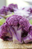 Purple broccoli on a wooden table Royalty Free Stock Image